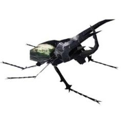 Caucasus Beetle - Insects - Science - Paper Craft - Canon CREATIVE PARK