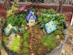Fairy Village Garden