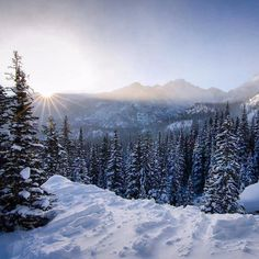 Enjoy the winter magic that is #RockyMountain National Park in #Colorado! This time of year @rockynps is transformed with snow and ice trading in greens for a suit of white. Where is your favorite place to visit in #winter? Photo by C. Brindle #NationalPark Service. by usinterior
