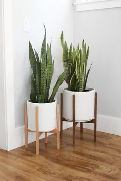 Medium Mid Century Modern Planter, Plant Stand, Plant Pot with Wood Stand - Ceramic Pot and Planter Stand Bali Decor, Modern Plant Stand, Wood Plant Stand, Plant Stands, Modern Planters, Wood Planters, Galvanized Planters, Planter Bench, Planter Garden
