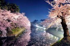 spring night by Sho Shibata