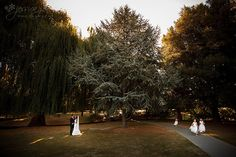 Pollard Park (Our ceremony location) - great shot showing scope of the gardens
