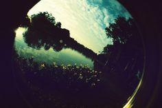 #Lomography Love #Analog #Photography