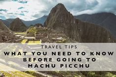 Travel Tips : What y