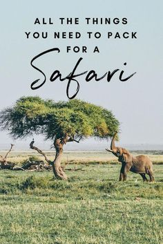The Ultimate Kenya Packing list. What to pack for a trip to Kenya? This list is aimed at backpackers traveling to Kenya / East Africa and also applies to other countries in sub-Saharan Africa. Rwanda Travel, Africa Travel, Mombasa, Travel Outfit Summer Airport, Summer Travel, Ultimate Packing List, Packing Tips, Packing Checklist, Parks