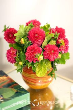 Decorative dahlias in a bright strawberry pink hue with geranium leaves. Set in a vase wrapped with colorful Midollino wires, this pretty flower arrangement is a sugary sweet gift for all occasions