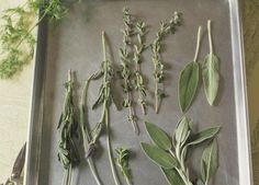 Air drying herbs is an easy way to preserve and store your garden herbs, with minimal loss of flavor and quality. Here are some simple steps for doing it.