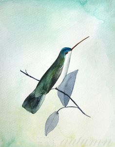 New Illustration from Mai Autumn - Hummingbird - Prints available in several sizes