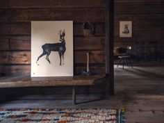 Little Helsinki: Forest greetings by Teemu Järvi