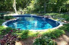 Hoppers in kidney liner pools | Kidney shaped, vinyl liner swimming pool installed in a very natural ...