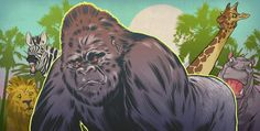 'The Financial Jungle' - Investment Executive Magazine