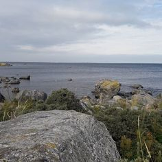 Gulf of Bothnia Finland, Westerns, Beach, Water, Outdoor, Gripe Water, Outdoors, The Beach, Beaches