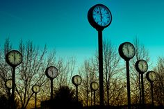 clock forest - Düsseldorf, Germany