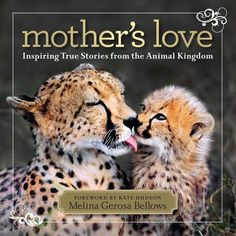 Mother's Love Photos -- National Geographic#/mothers-love-book-cover_52326_600x450.jpg#/mothers-love-book-cover_52326_600x450.jpg#/mother-baby-ducks_52322_600x450.jpg#/mother-baby-dolphin_52365_600x450.jpg#/mother-baby-pandas_52364_600x450.jpg#/mothers-love-book-cover_52326_600x450.jpg