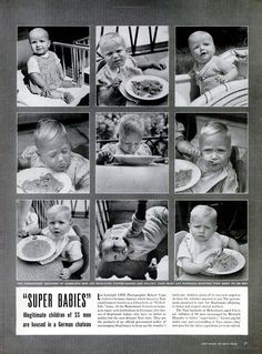 lebensborn babies