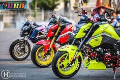 200+ Custom 2017 Honda Grom / MSX 125 Pictures | Photo Gallery | Honda-Pro Kevin Grom Bike, Grom Motorcycle, Custom Motorcycles, Cars And Motorcycles, Honda Grom Custom, Pit Bike, Honda S, Performance Parts, Custom Paint