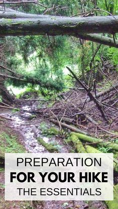 How to prepare for hiking with essentials. Hiking packing list for beginners for day hikes, vacation. Hiking tips when you're out on hiking trails as your workout! There's hiking gear, whether it's a short or long day hike, summer hiking in hot weather or winter hiking in cold weather! Travel tips for your next outdoor adventure vacation for your national parks trip or travel bucket list destination! Items for your day hike packing list or travel packing list!! #hiking #hikingtips