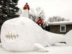 Três irmãos esculpiram um gigantesco tubarão de neve no estado de Minnesota, Estados Unidos