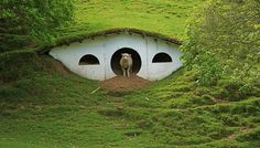 Sheep Have Taken Over Hobbit Holes on The Lord of The Rings Set