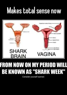 This is hilarious even though I don't have periods anymore...Shark week