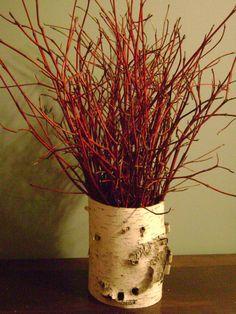 White Birch Bark Vase with Dogwood by RussTickNaturalWoods on Etsy, $40.00