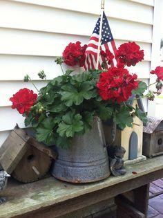 Red geranium in an old coffee pot. Red geranium in an old coffee pot. White Planters, Flower Planters, Flower Pots, Fall Planters, Geraniums Garden, Red Geraniums, Summer Flowers, Beautiful Flowers, Container Gardening Vegetables