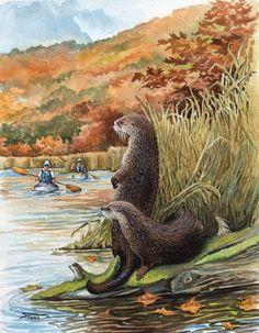 Mark Stash. West river otters