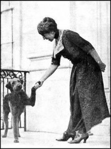 This is the in a series of articles about dogs in history. You may never even have known President Warren Harding had a dog, Laddie Boy. After reading this, you will know he was a special dog. Presidents Wives, American Presidents, American History, Black Presidents, Irish Terrier, Airedale Terrier, Terriers, First Woman To Vote, Warren Harding