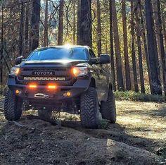Tundra Beast