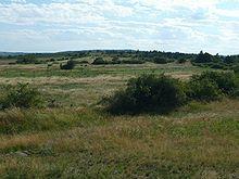 Národní park Podyjí – Wikipedie