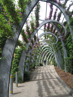 Pergola // Ronstan Tensile Architecture; modern with plants and greenery