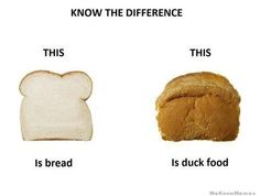 Google Image Result for http://weknowmemes.com/wp-content/uploads/2012/07/know-the-different-bread.jpeg