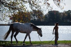 Girl owner walks her mare by the water. Annapolis Kent Island Maryland High School Senior Portrait Photography with Horse Pet by photographer Leo Dj