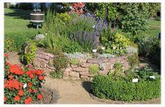 spirála Stepping Stones, Sidewalk, Garden, Outdoor Decor, Plants, Stair Risers, Garten, Side Walkway, Lawn And Garden
