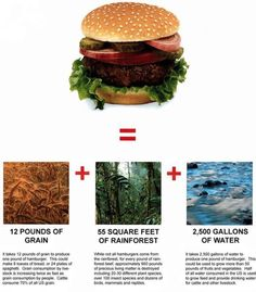 the high cost of a hamburger... not to mention the impact it has on your health... it's just not worth it.