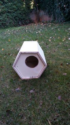Cat house (hexagon)