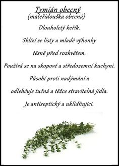 tymián obecný Korn, Good Advice, Detox, Food And Drink, Herbs, Gardening, Health, Health Care, Lawn And Garden
