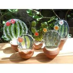 cactus flower name Flower Bookey, Flower Film, Cactus Flower, Flower Pots, Mini Cactus, Cactus Pot, Succulents Drawing, Glass Cactus, Purple Succulents