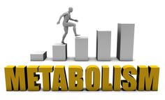 Struggling with a slow #metabolism?  Here are the Top 10 Best Ways to Boost Your Metabolism: http://www.supplementreviewshark.com/boost-metabolism/ #supplementreviewshark