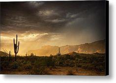 A Desert Monsoon Sunset  Canvas Print / Canvas Art By Saija  Lehtonen