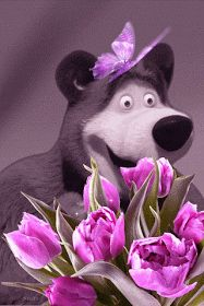 Beautiful colorful pictures and Gifs: Beautiful Flower Pictures