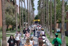 Palm Walk at Arizona State University is one of the largest palm tree gardens in the world. Home of the Sun Devils.