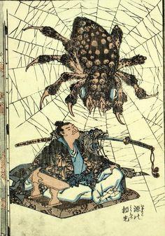 Weaver; Oogumo, spider; spider