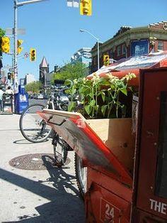 Print is dead, long live plant life. http://www.unurth.com/Posterchild-Planter-Box-NYC