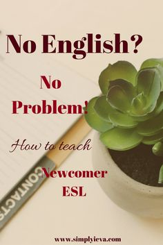 Newcomer ESL, ELL, EFL; ESL teaching; ESL teaching checklist; ESL beginner ideas