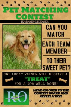 Richmond Orthodontics-Pet Matching Contest