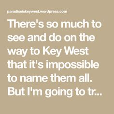 """There's so much to see and do on the way to Key West that it's impossible to name them all. But I'm going to try to hit the """"high points"""". There's no way to do them all on one trip, but if you're driving into - and out of - Key West, you should be … Florida Vacation, Florida Keys, Florida Trail, Big Pine Key, Florida Adventures, Blue Hole, Beer Company, Down South, Sunshine State"""