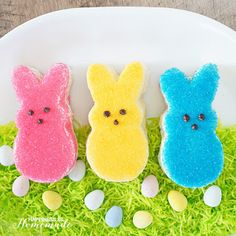 """These DIY Easter Bunny Circus Animal Cookies put a holiday spin on a classic favorite! Homemade """"Circus Animal"""" cookies in adorable bunny shapes for Easter! Easter Bunny Cake, Chocolate Easter Bunny, Easter Peeps, Bunny Cakes, Easter Cookies, Easter 2018, Easter Food, Easy Easter Desserts, Easter Recipes"""