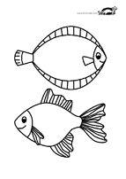 FISH and MERMAID Aquarium | krokotak