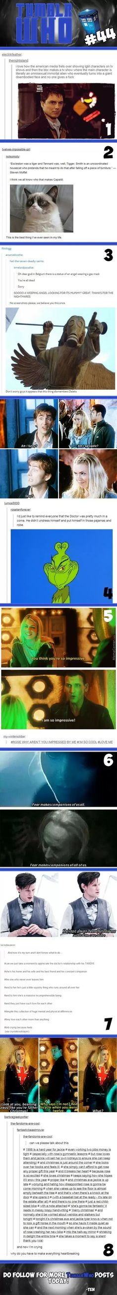 Lol Christopher Eccleston was a tiger, David Tennant was tigger and Matt Smith was a household cat who falls off furniture and pretends he meant to do it XD Also, that last one made me cry... that was so beautiful and sad and heartbreaking!!